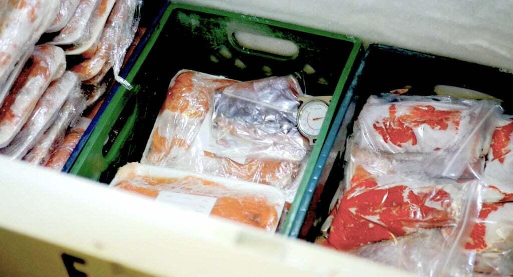 Frozen Salmon and Fish for the Needy at Arizona Kosher Pantry
